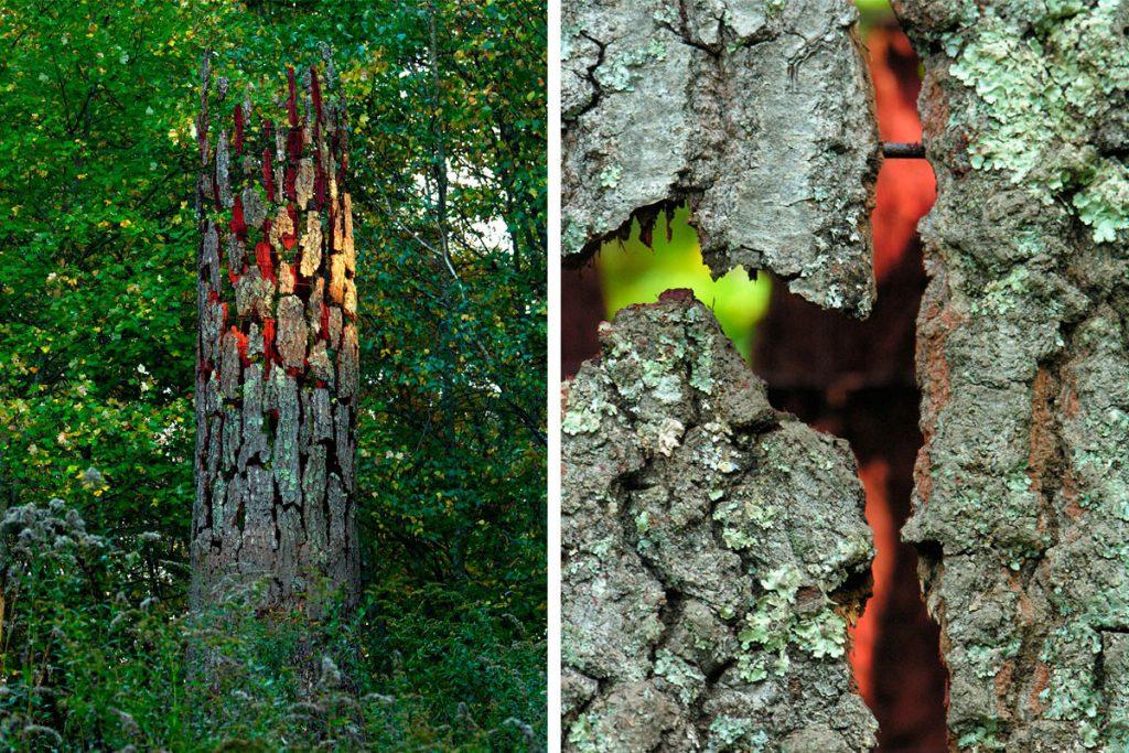 tree-memorial-2007-02-cornelia-konrads