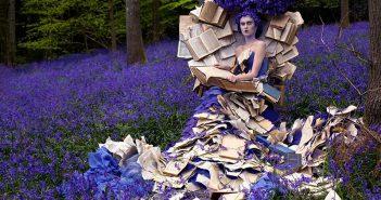 Kirtsy Mitchell, Wonderland