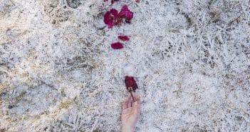 THE NOVEL OF NATURE di Michela Taeggi; GAreview; Magazine fotografico di glamouraffair.com