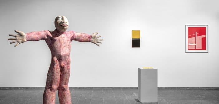 IL VOLO PLASTICO di Matthias Sieff