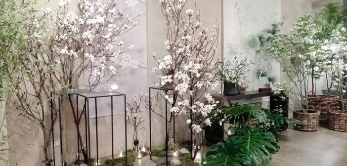 IL GIARDINO D'ORIENTE DI BE FLOWER